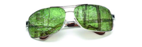 green-colored-glasses_article